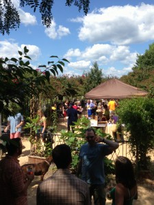 Elderberry Festival Beer Garden